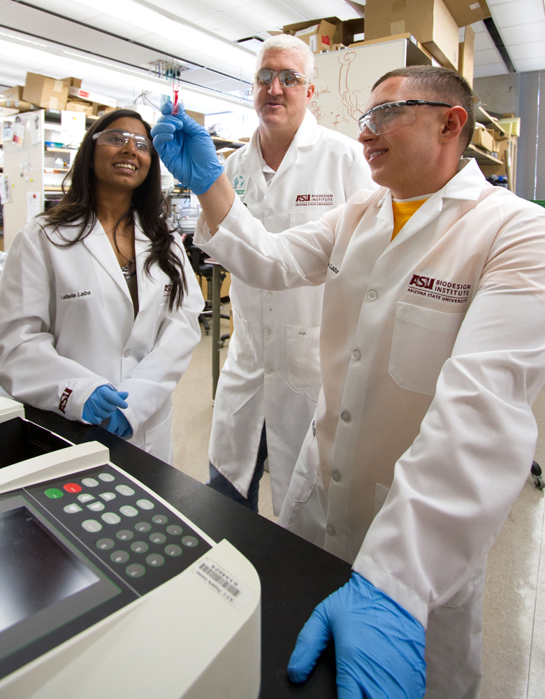 Young students learn their way around research lab in summer internship