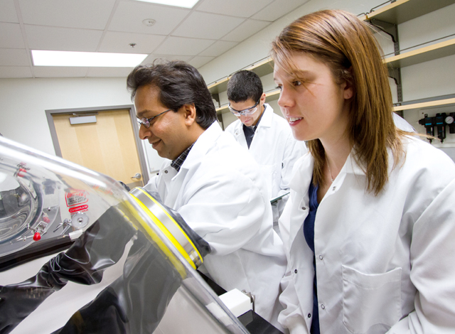 Undergrads work alongside experienced researchers through national program