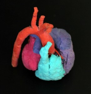 ASU Heart Model