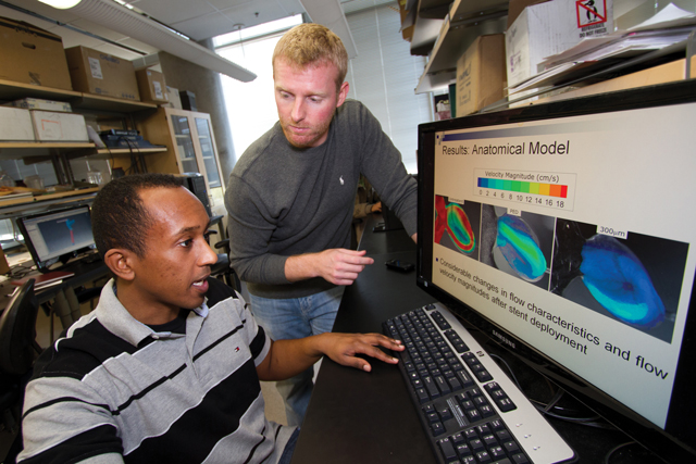 NSF CAREER awards advance research in biosensors, cardiovascular fluid dynamics