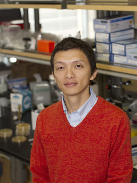 Biomedical research revealing secrets of cell behavior