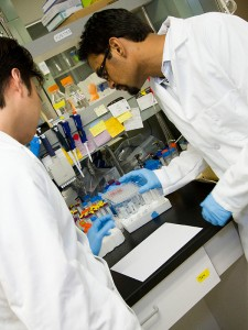Kaushal Rege (right), an associate professor of chemical engineering at ASU, is performing research on methods to repair and regenerate human body tissue.