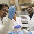Innovative approaches to sealing surgical incisions and torn tissue are being explored by ASU chemical engineer Kaushal Rege's research team, with help from the National Institutes of Health.