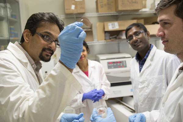 Laser technology, nanomaterials combine to offer promising body tissue repair technique