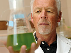 ASU receives U.S. Department of Energy award for algae biofuel research