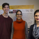 Opening paths to progress with programmable materials