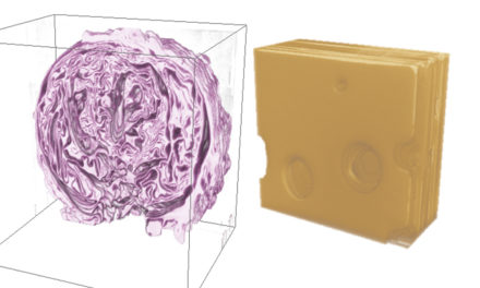 Red cabbage and Swiss cheese produce interest in science