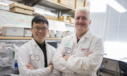 Doctoral candidate's revolutionary biosensor research earns top award