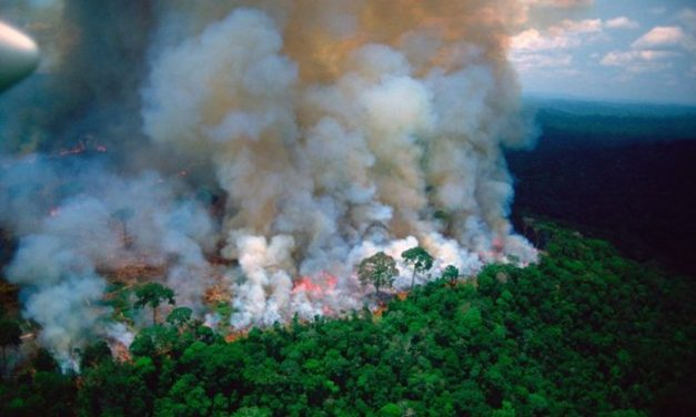 Fires in the Amazon: Arizona researchers determine what's true, what's not