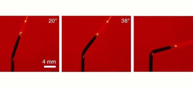Engineers Create Tiny 'Artificial Sunflowers' That Bend Towards The Light