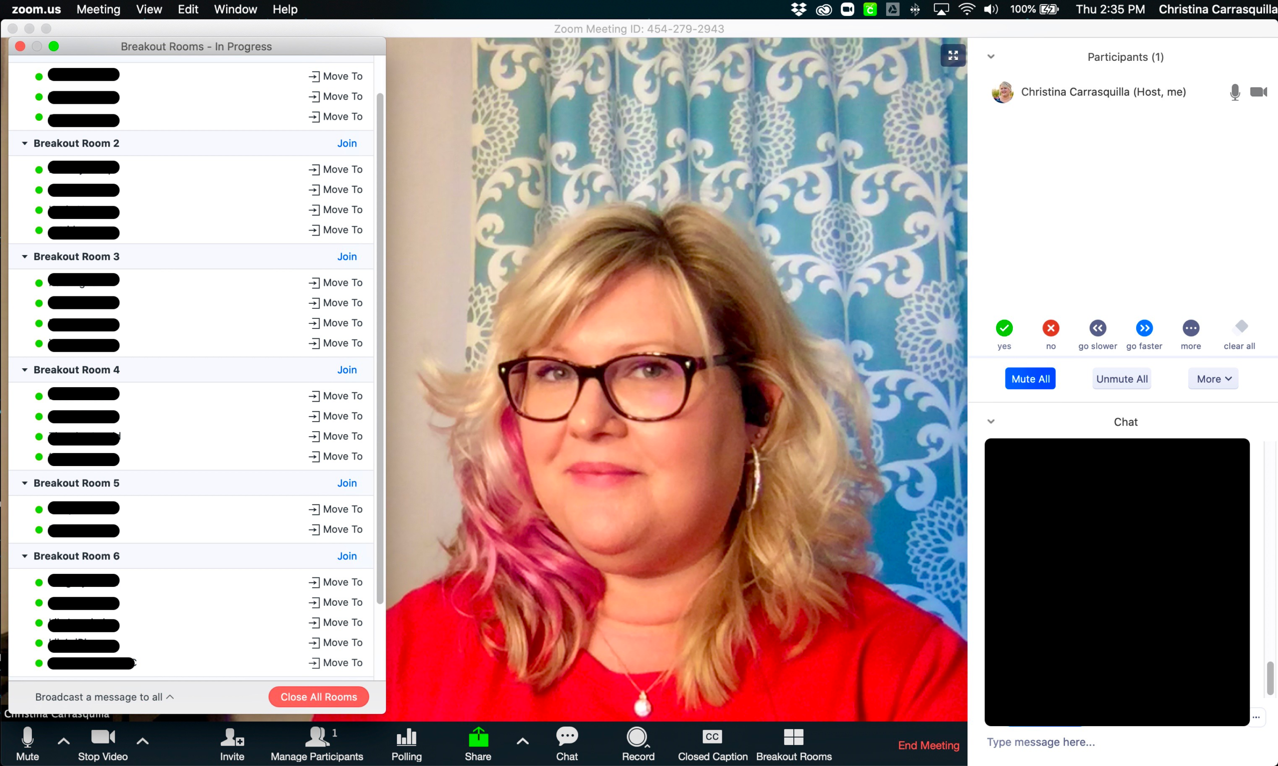 screen capture of an online class
