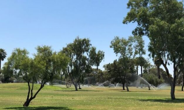 'Oasis effect' in urban parks could contribute to greenhouse gas emissions, ASU study finds