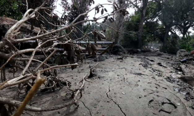 Coping with fire-scorched land more prone to mudslides