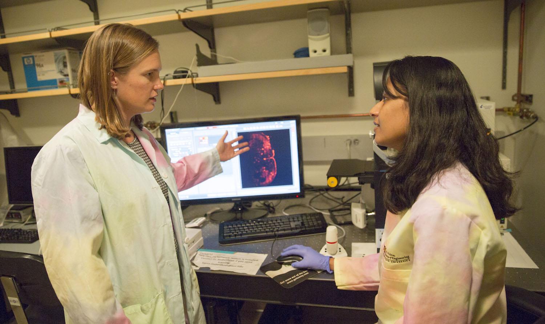 Sarah Stabenfeldt and Vimala Bharadwaj work in the Stabenfeldt Lab.
