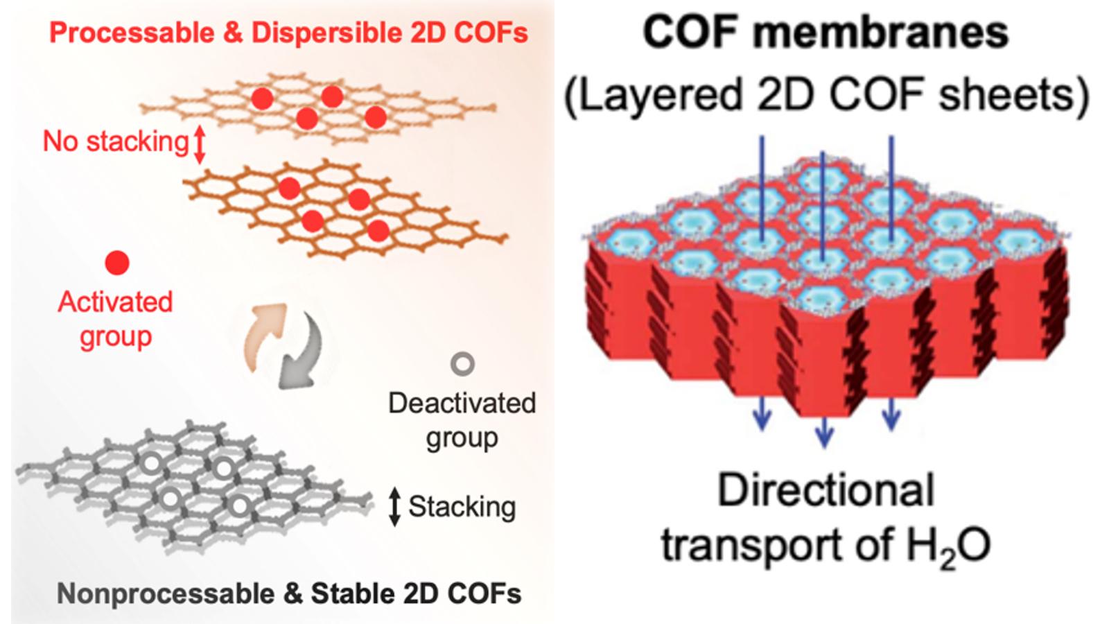 graphics depicting COF membranes