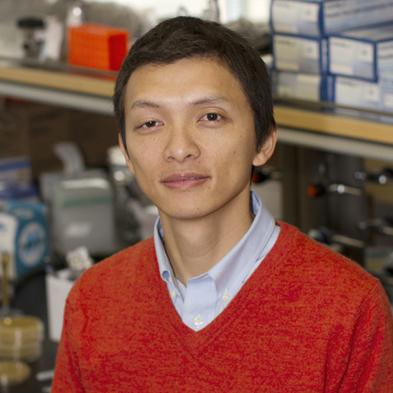 portrait of Xiao Wang