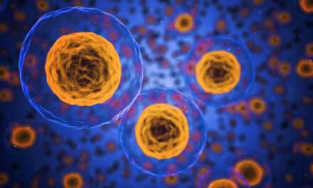 Bioimaging funding stimulates harmonized research