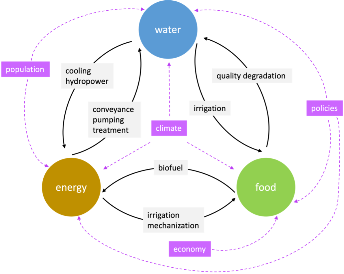 A diagram of the food-energy-water nexus and how climate, population, the economy and policies affect it.